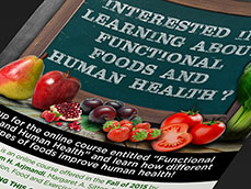 FSU Functional Foods & Human Healthy Flyer